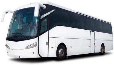 white-bus.jpg